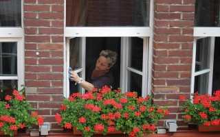 Как чисто вымыть окна