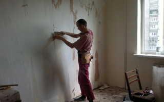 Какой краской лучше красить стены на кухне