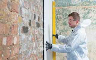 Как установить гипсокартон на стену без профилей