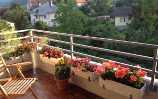 Как повесить на балконе цветы